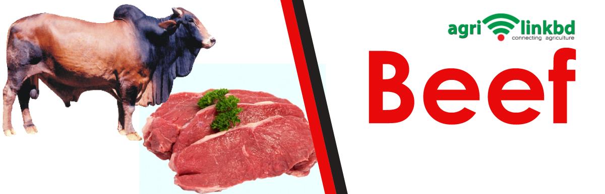 Beef Fattening