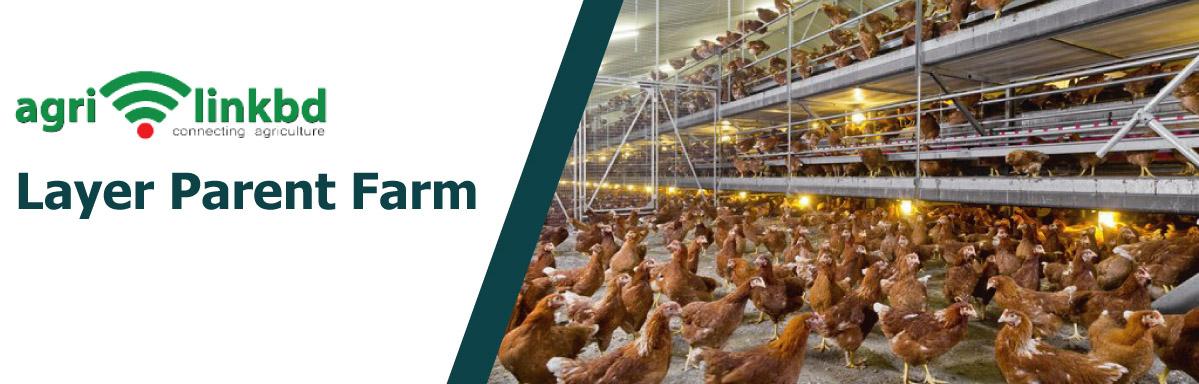 Layer Parent Farm