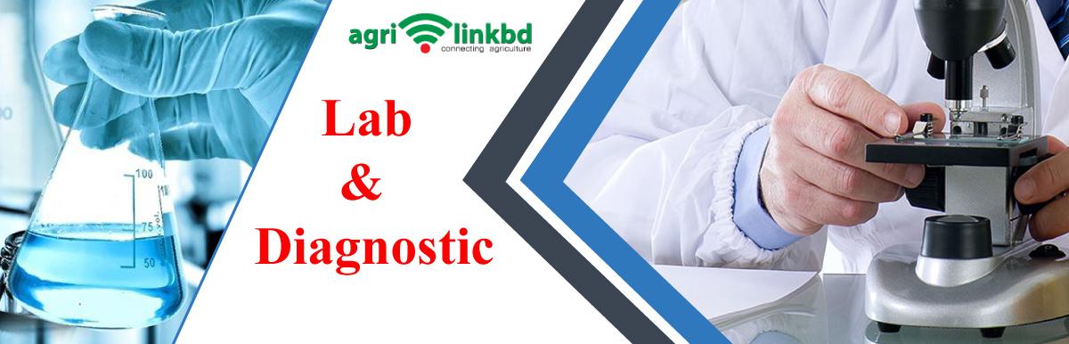 Lab & Diagnostic
