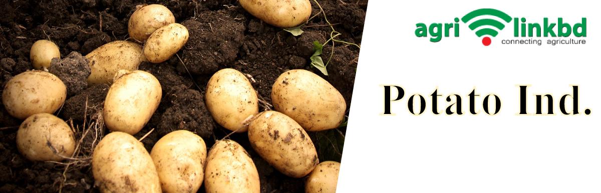 Potato Ind.